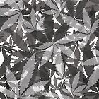 Gray Pot Leaves by TinaGraphics