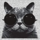 Sunglasses Cat - black by Cimoe