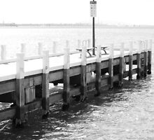 Black and White Geelong Pier by Jeanne Peters