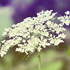 Wild Flowers 3 by ElleEmDee