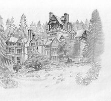 Cragside castle by Alex Lehner