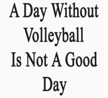 A Day Without Volleyball Is Not A Good Day  by supernova23