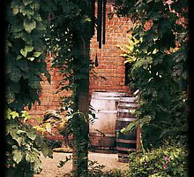 Rustic Barrels and Wind Chimes garden photography by jemvistaprint