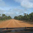 The Long Road Ahead by dozzam