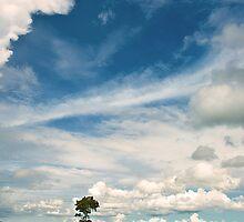 Alone by Purnawan Taslim Hadi