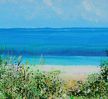 Taperoo Beach by Barbara Wogan-Provo