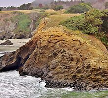Headlands of the Jughandle State Reserve by Martha Sherman