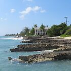 Grand Cayman Island by pacapunch72
