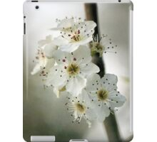 Days of Blossom iPad Case/Skin