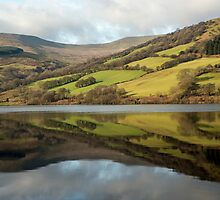 Brecon Beacons National Park Talybont Reservoir Reflections Wales by Nick Jenkins