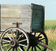 Wagon Hitch on Vintage Farm Equipment by rhamm