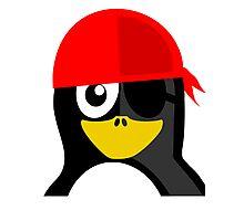 Pirate Penguin Photographic Print