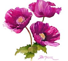 Purple Poppies by Pat Yager
