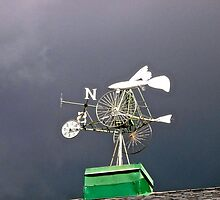 Weather Vane by Shulie1