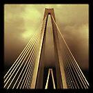 Arthur Ravenel Jr. Bridge - Charleston, SC #4 by Edith Reynolds