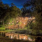 Deck on the Bayou by Bonnie T.  Barry