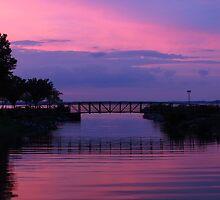 Shoreline Park At Dusk by SRowe Art