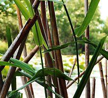 Wetland Reeds by SRowe Art