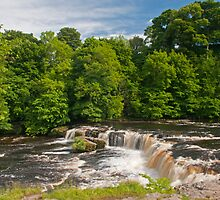 Upper Aysgarth Waterfall Yorkshire Dales by Nick Jenkins