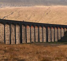 Ribblehead Viaduct Yorkshire Dales by Nick Jenkins
