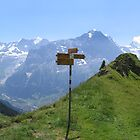Mountain signpost by Rob Frith
