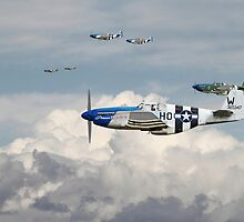 P51 Mustang - Blue Noses - 352nd FG by warbirds