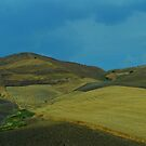 Sicily. Fields. by Igor Pozdnyakov