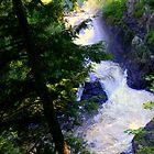 Dorwin Falls 6 by Elfriede Fulda