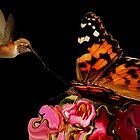 BUTTERFLY AND HUMMINGBIRD~ by RoseMarie747