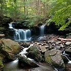 Summer Breeze at R B Ricketts Falls by Gene Walls
