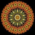 Nature Kaleidoscope 001 by fantasytripp