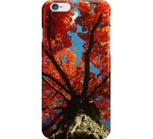 Trees on Fire iPhone Case/Skin
