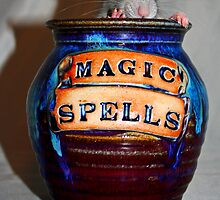 Magic Spells: Edgar by Kerri Ann Crau
