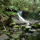 Horseshoe Falls, Mt Field National Park, Tasmania by imaginethis
