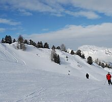 Scenic skiing by justbmac