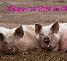 HAPPY AS PIGS IN SHIT by JASPERIMAGE