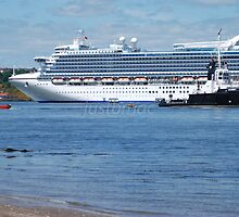 Caribbean Princess: Dwarfed Neighbours by justbmac