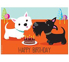 Happy Birthday from the Terriers Photographic Print