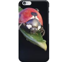 Ladybug Journey iPhone Case/Skin