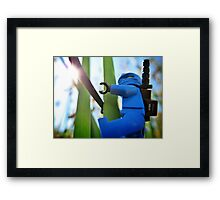 Training in the grass (1 of 3) Framed Print