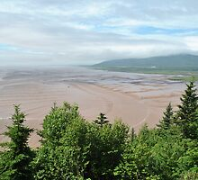 Bay of Fundy Mud Flats, Low Tide by PrestoConn