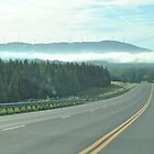 Windy ridge, Aroostook County by PrestoConn