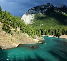 Bow River 1 by Charles Kosina