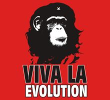 VIVA LA EVOLUTION by Grunger71