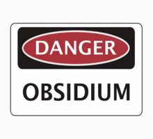 DANGER OBSIDIUM FAKE ELEMENT FUNNY SAFETY SIGN SIGNAGE by DangerSigns