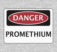 DANGER PROMETHIUM FAKE ELEMENT FUNNY SAFETY SIGN SIGNAGE by DangerSigns
