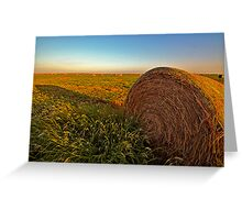 Hay in the Field Greeting Card