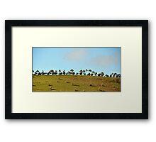 Dotted Horizon Framed Print