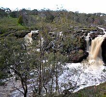 Nigretta Falls - Victoria by forgantly