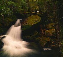Waterfall on Mother Cummings Rivulet, northern Tasmania by Nic Haygarth